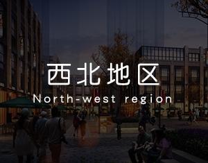 西北地区工程案例